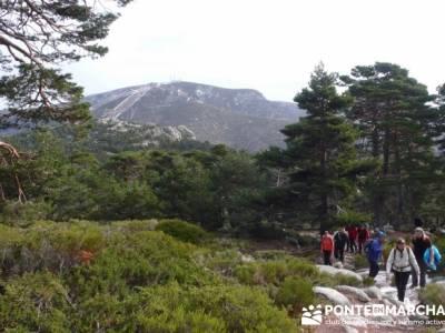 Ruta por el valle de Fuenfría, Siete Picos; ruta a pie por madrid